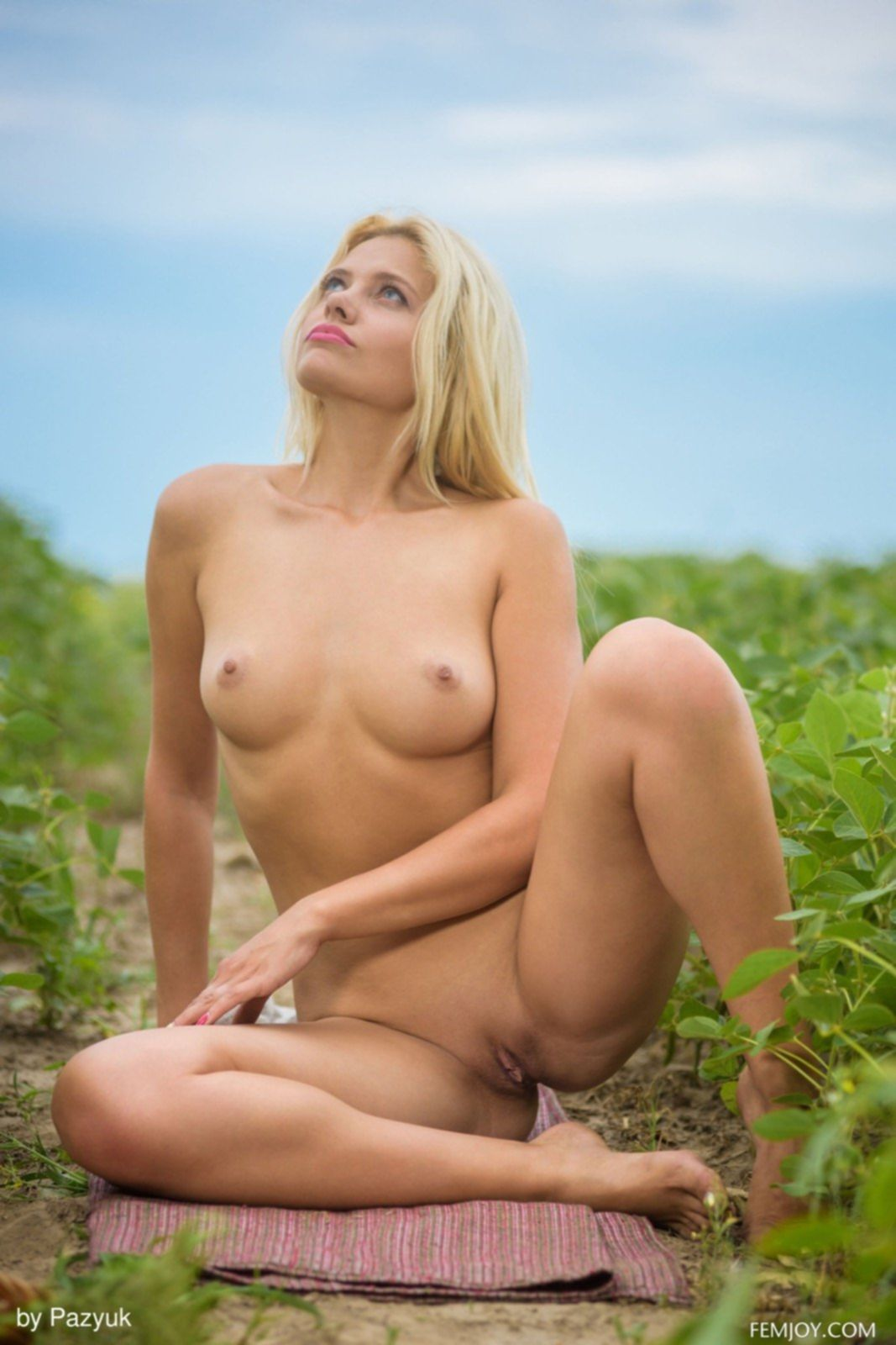 Голая блондинка с бритой писькой в поле - фото